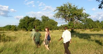 Recommended Lodges For Walking Safari in Tanzania