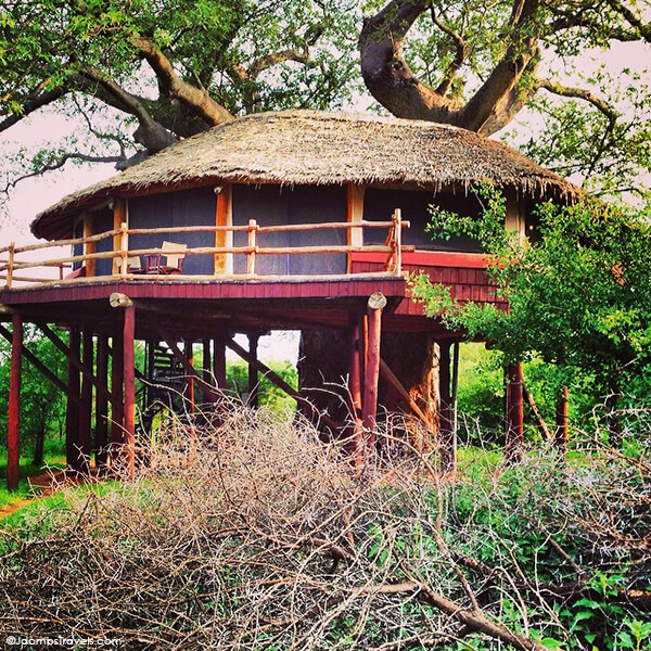 Lodge of The month August 2021- Tarangire Treetops